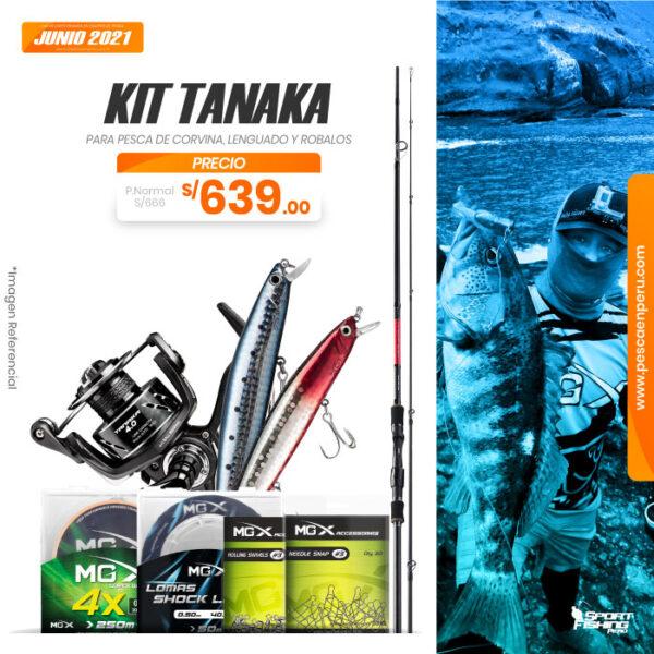 02 kit tanaka 2