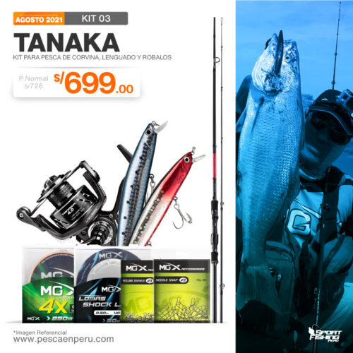 03 kit tanaka