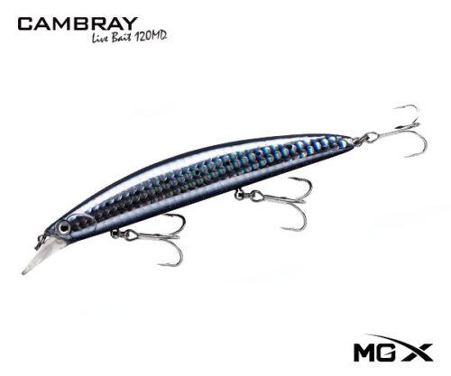 mgx cambray 120md Night Blue Sardine