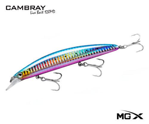 mgx cambray 120md Purple Belly Sardine