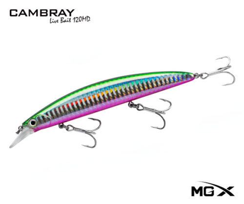 mgx cambray 120md Shinner Pink Belly