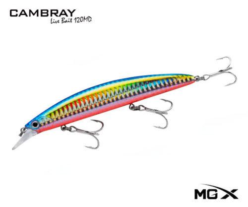 mgx cambray 120md anchovy 2