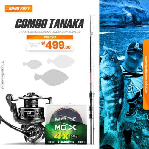 06 combo tanaka 1